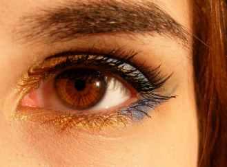 brown-brown-eyes-iris-gene-46279.jpeg